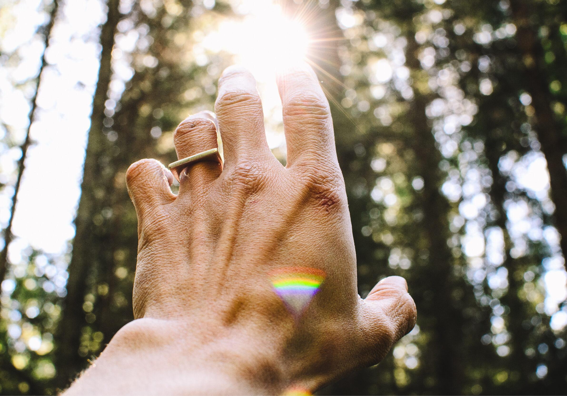 Uitgestrekte hand in het bos naar de zon